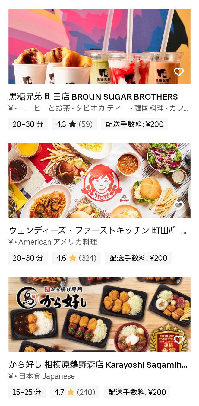 Tokyo machida sagamioono hy 200304