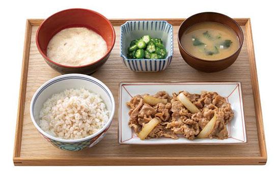 0 inagi yoshinoya gyusara