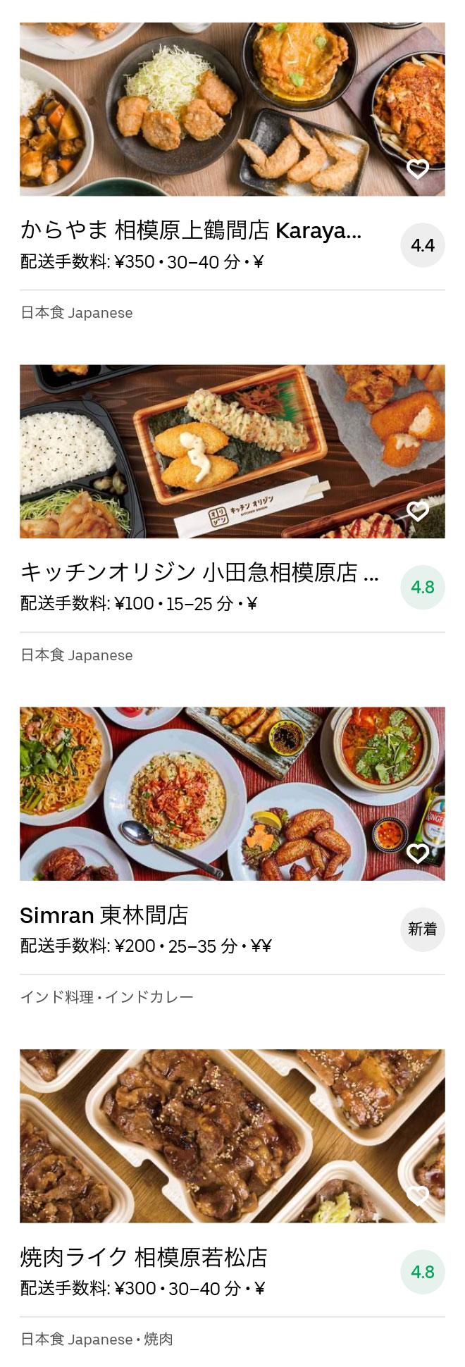 Odakyu sagamihara menu 2008 03