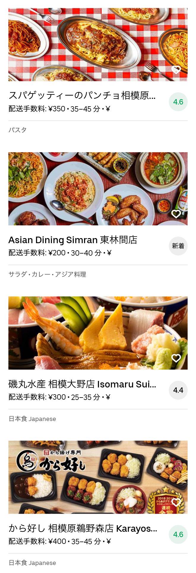 Odakyu sagamihara menu 2008 05
