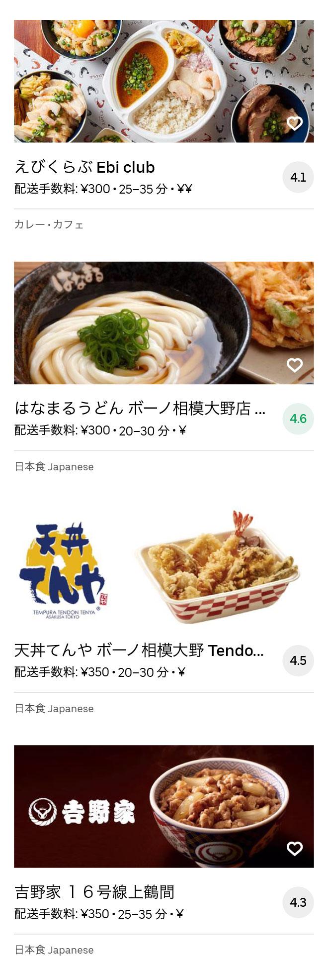 Odakyu sagamihara menu 2008 06