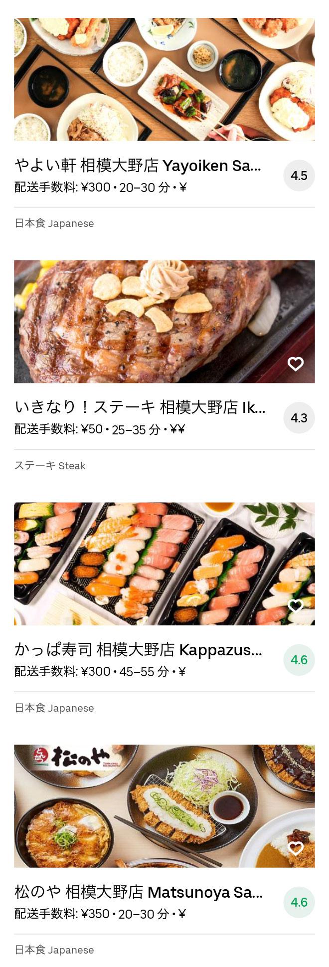 Odakyu sagamihara menu 2008 07