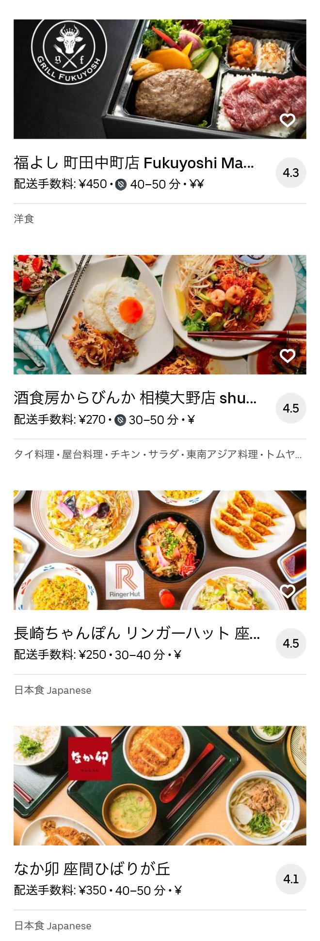 Odakyu sagamihara menu 2008 10