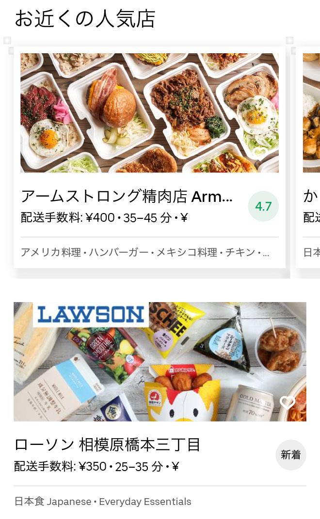Sagamihara menu 2008 02