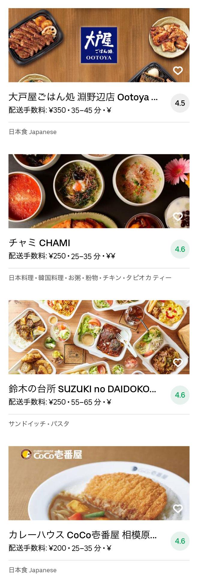 Sagamihara menu 2008 05
