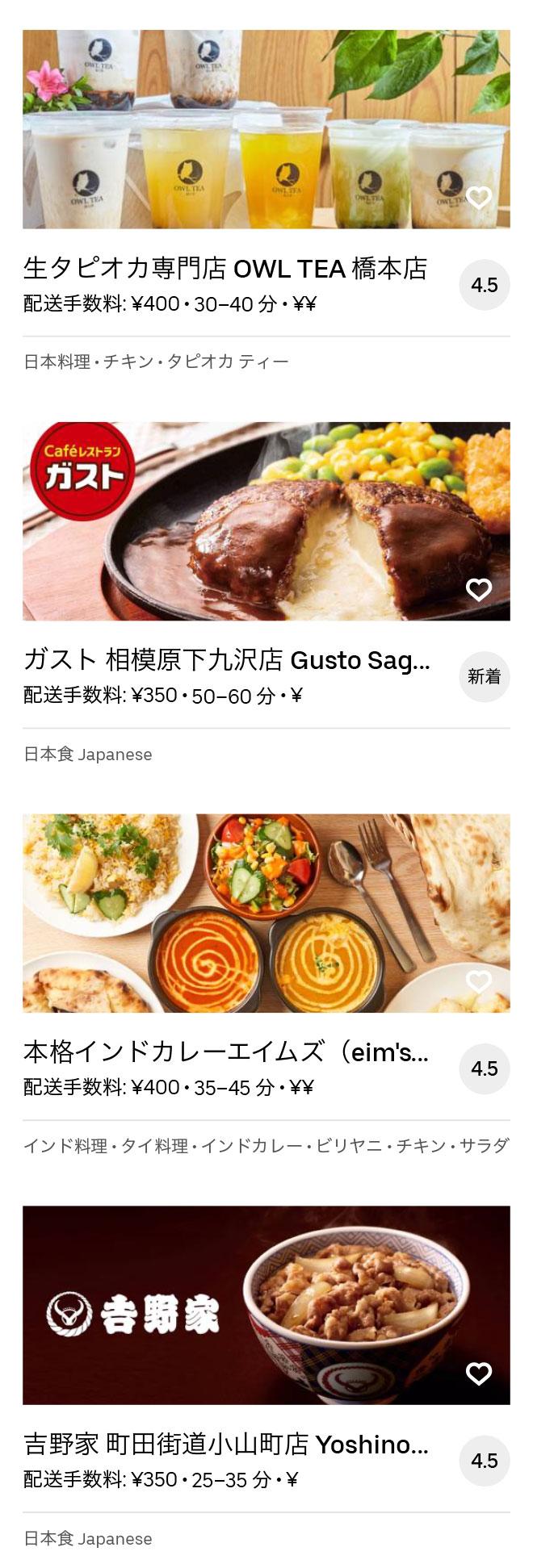 Sagamihara menu 2008 06