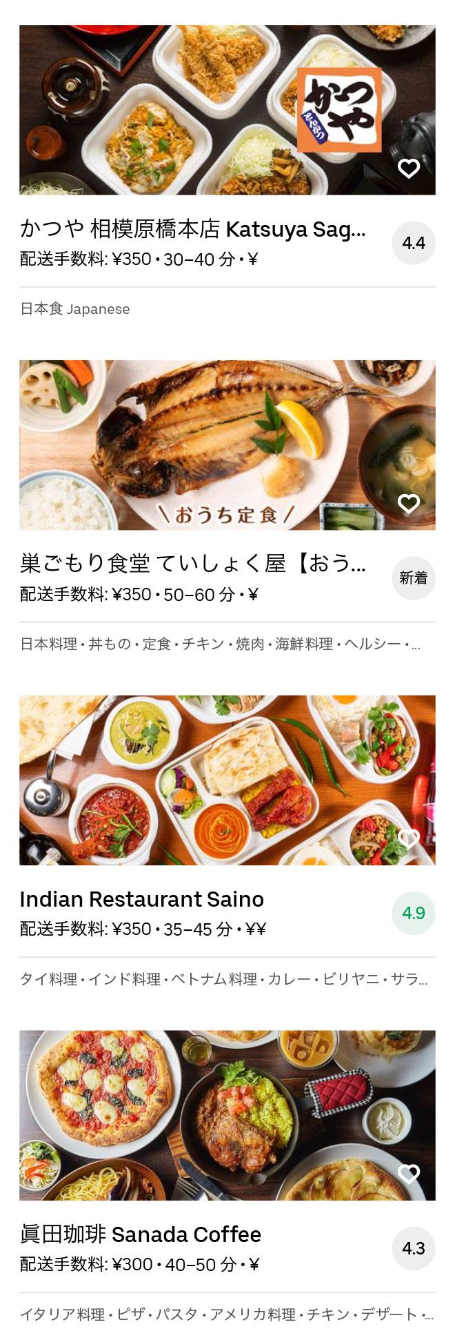 Sagamihara menu 2008 08