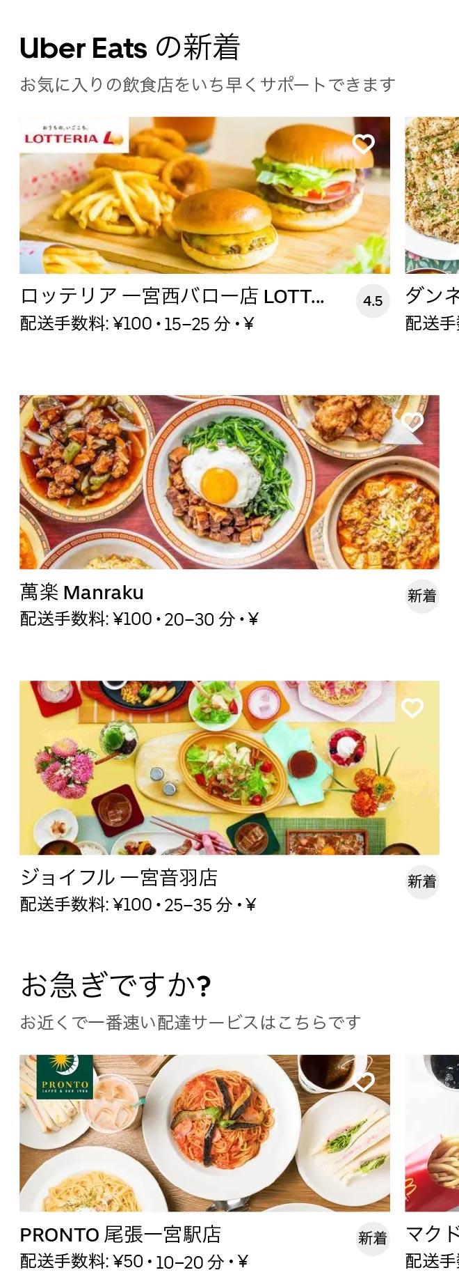 Ichinomiya menu 2010 02