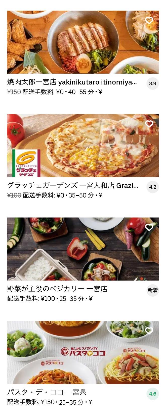 Ichinomiya menu 2010 06