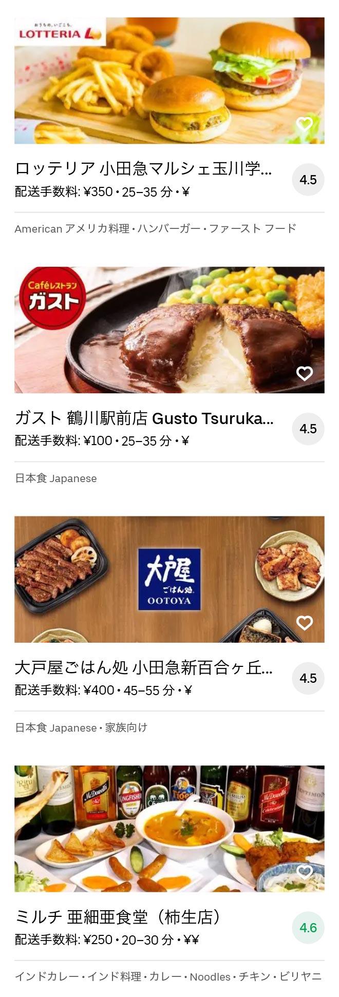 Tsurukawa menu 2010 06
