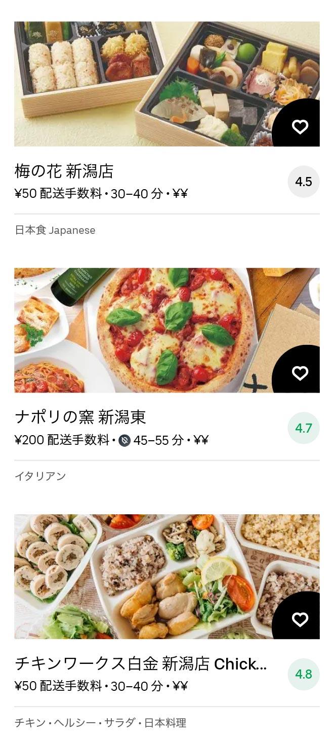 Niigata menu 2011 13