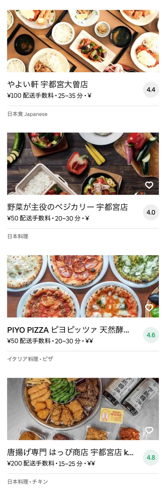 Tobu utsunomiya menu 2010 11